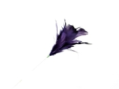 Purple Flower Feather Pick - Red Hat Society Ladies Decor